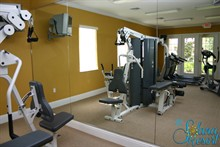 Solana Fitness Suite